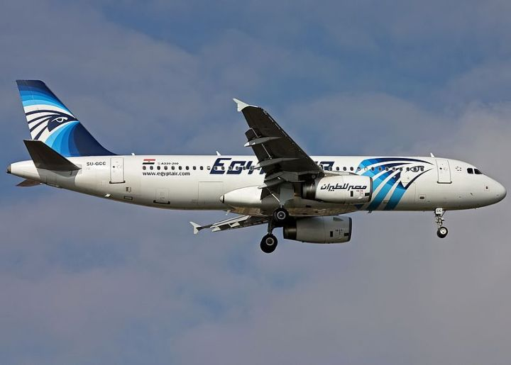 800px-egyptair_airbus_a320_28su-gcc29_on_finals_at_ataturk_airport