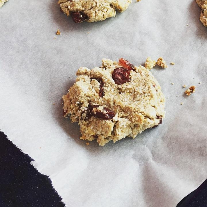 cookie-coco-cranberries