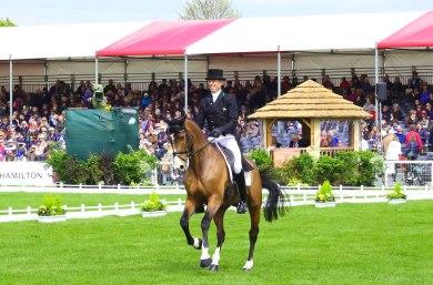 Jonty Evans en pleine reprise @Flickr / Badminton Horse Trials