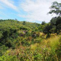 Guinée Conakry: au coeur de l'Afrique subsaharienne