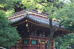 Zoo de Ueno. Crédits : Léa Gorius.