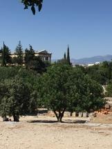 La vue sur l'Héphaïstéion, dans l'agora grecque