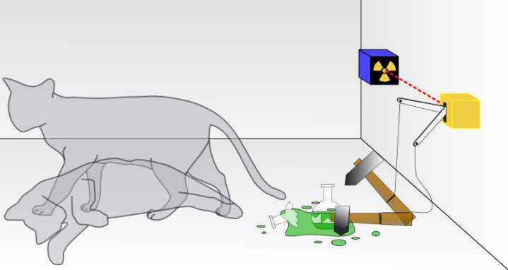 800px-schrodingers_cat-svg