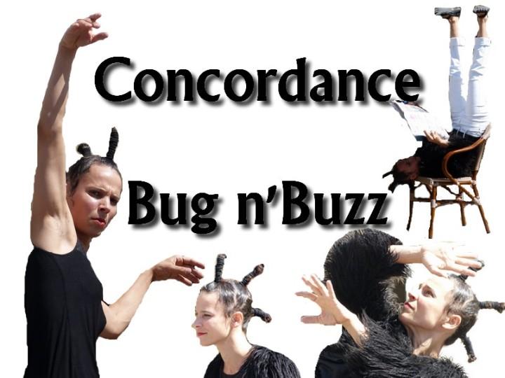 Montage concordance